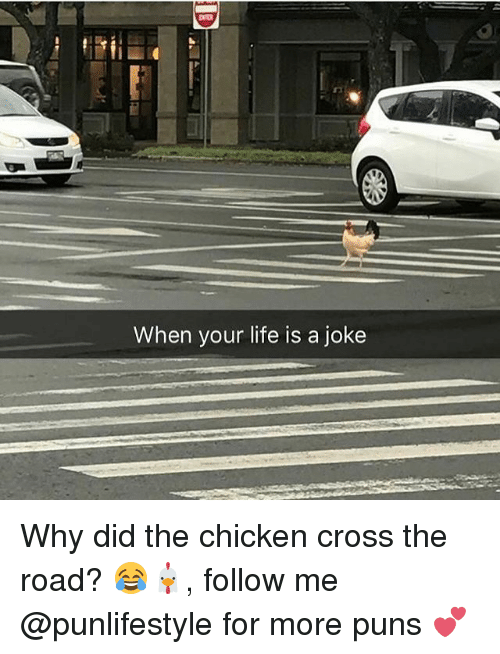 Chicken Crossing: When your life is a joke Why did the chicken cross the road? 😂🐔, follow me @punlifestyle for more puns 💕