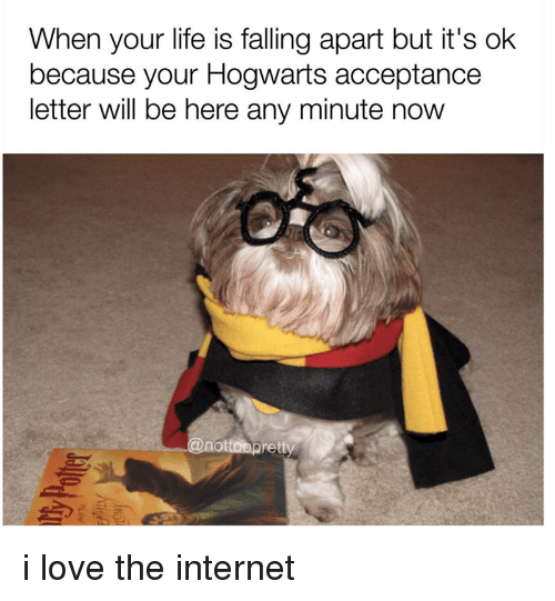 Life Is Falling Apart: When your life is falling apart but it's ok  because your Hogwarts acceptance  letter will be here any minute now  @notoapret i love the internet
