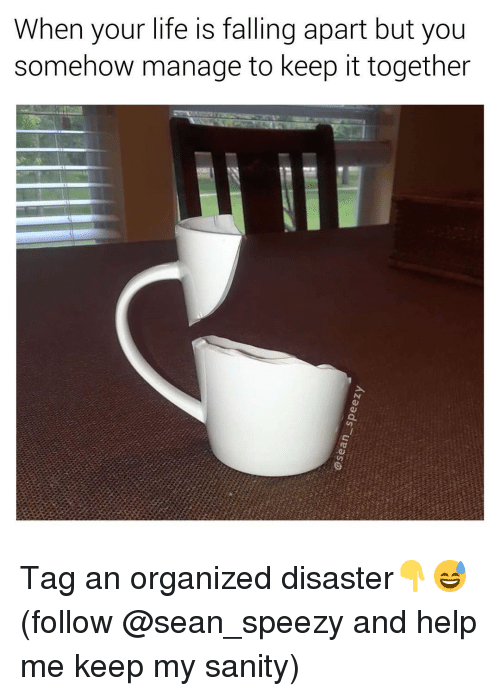 Life Is Falling Apart: When your life is falling apart but you  somehow manage to keep it together Tag an organized disaster👇😅 (follow @sean_speezy and help me keep my sanity)