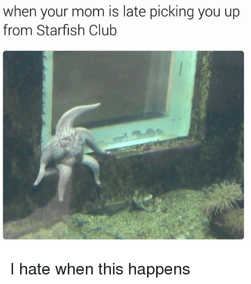 Starfishing: when your mom is late picking you up  from Starfish Club I hate when this happens
