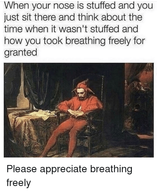 Appreciate, Time, and How: When your nose is stuffed and you  just sit there and think about the  time when it wasn't stuffed an  how you took breathing freely for  granted Please appreciate breathing freely