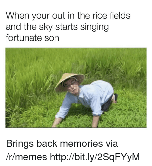 Memes, Singing, and Http: When your out in the rice fields  and the sky starts singing  fortunate son Brings back memories via /r/memes http://bit.ly/2SqFYyM