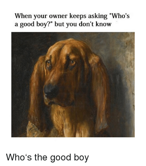"""Good, Classical Art, and Asking: When your owner keeps asking """"Who's  a good boy?"""" but you don't know Who's the good boy"""