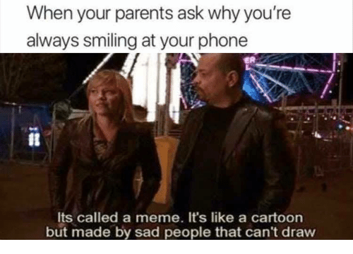 Cant Draw: When your parents ask why you're  always smiling at your phone  Its called a meme. It's like a cartoon  but made by sad people that can't draw