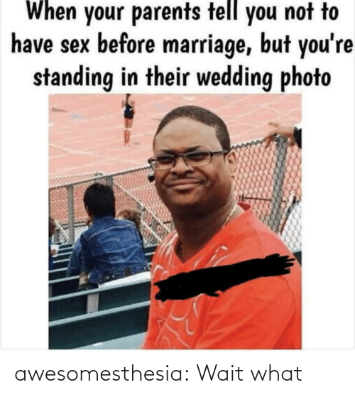 Wedding: When your parents tell you not to  have sex before marriage, but you're  standing in their wedding photo awesomesthesia:  Wait what