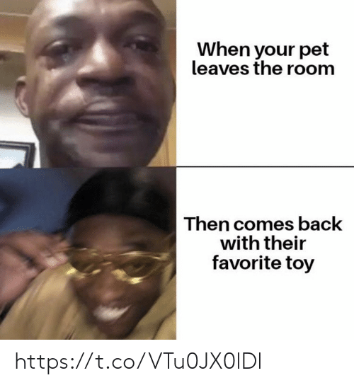 Memes, Back, and 🤖: When your pet  leaves the room  Then comes back  with their  favorite toy https://t.co/VTu0JX0lDl