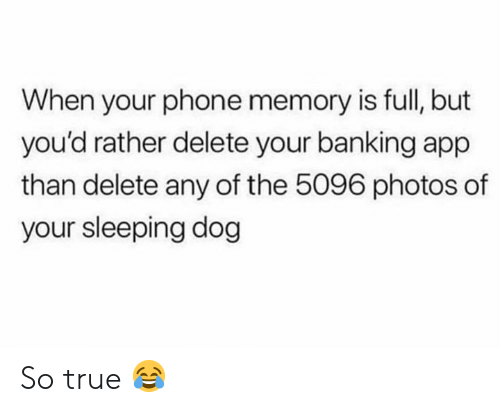 Banking: When your phone memory is full, but  you'd rather delete your banking app  than delete any of the 5096 photos of  your sleeping dog So true 😂