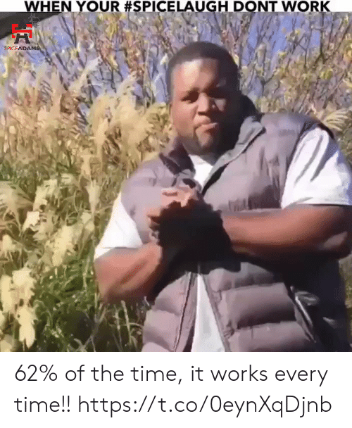 Memes, Work, and Time: WHEN YOUR #SPICELAUGH DONT WORK  SPICFADAMS 62% of the time, it works every time!! https://t.co/0eynXqDjnb