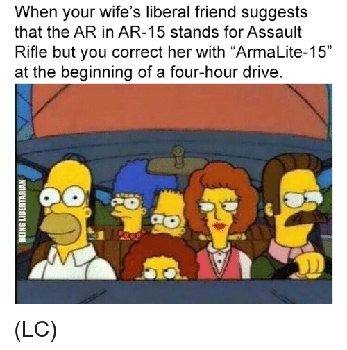 """Ar 15: When your wife's liberal friend suggests  that the AR in AR-15 stands for Assault  Rifle but you correct her with """"ArmaLite-15""""  at the beginning of a four-hour drive (LC)"""