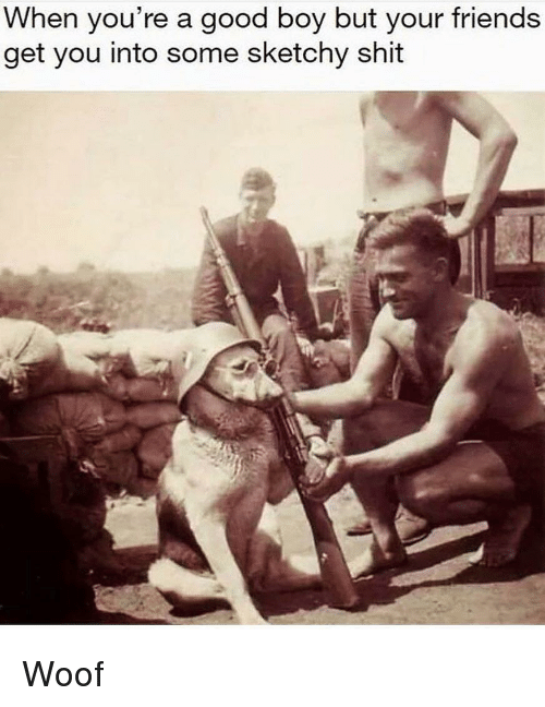 Friends, Shit, and Good: When you're a good boy but your friends  get you into some sketchy shit Woof