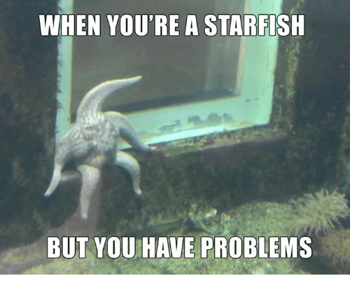 Starfishing: WHEN YOU'RE A STARFISH  BUT YOU HAVE PROBLEMS