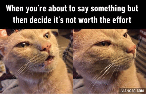 9gag, Grumpy Cat, and Not Worth the Effort: When you're about to say something but  then decide it's not worth the effort  VIA 9GAG.COM