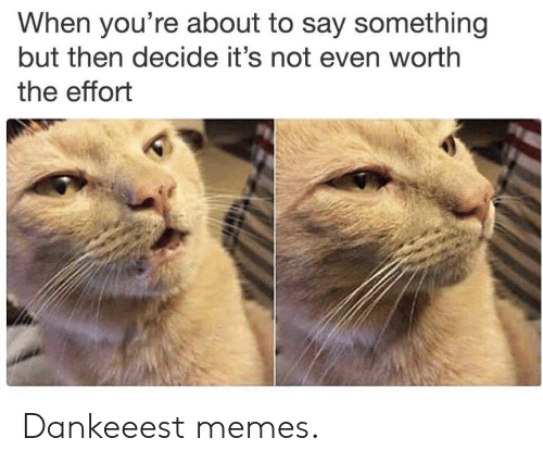 Memes, Youre, and Say Something: When you're about to say something  but then decide it's not even worth  the effort Dankeeest memes.