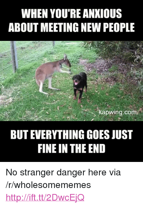 """Kapwing: WHEN YOU'RE ANKIOUS  ABOUT MEETING NEW PEOPLE  kapwing.com  BUT EVERYTHING GOES JUST  FINE IN THE END <p>No stranger danger here via /r/wholesomememes <a href=""""http://ift.tt/2DwcEjQ"""">http://ift.tt/2DwcEjQ</a></p>"""