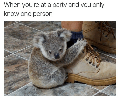 When Youre At A Party: When you're at a party and you only  know one person