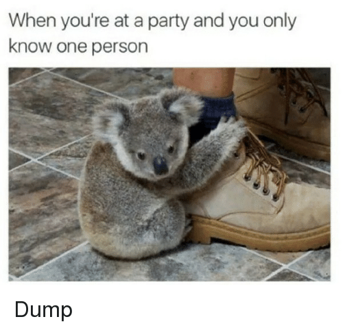 Party, One, and You: When you're at a party and you only  know one person Dump