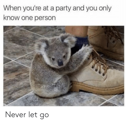 When Youre At A Party: When you're at a party and you only  know one person Never let go