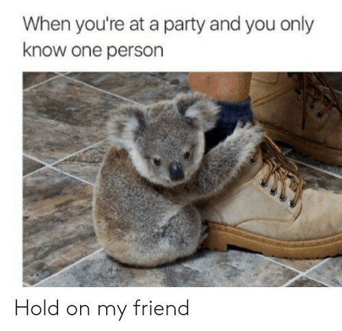 Party, One, and Friend: When you're at a party and you only  know one person Hold on my friend