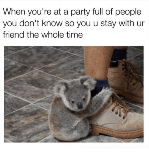 Party, Time, and Friend: When you're at a party full of people  you don't know so you u stay with ur  friend the whole time