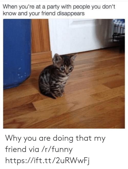 When Youre At A Party: When you're at a party with people you don't  know and your friend disappears Why you are doing that my friend via /r/funny https://ift.tt/2uRWwFj