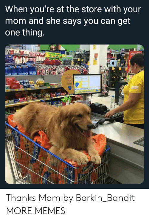 Dank, Memes, and Target: When you're at the store with your  mom and she says you can get  one thing  10% Thanks Mom by Borkin_Bandit MORE MEMES