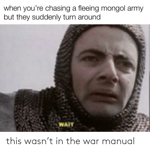 The War: when you're chasing a fleeing mongol army  but they suddenly turn around  WAIT this wasn't in the war manual