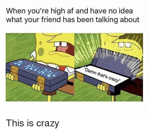 "Af, Crazy, and SpongeBob: When you're high af and have no idea  what your friend has been talking about  ""Damn that's crazy"""