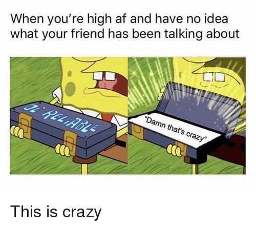 """This Is Crazy: When you're high af and have no idea  what your friend has been talking about  """"Damn that's crazy"""" This is crazy"""