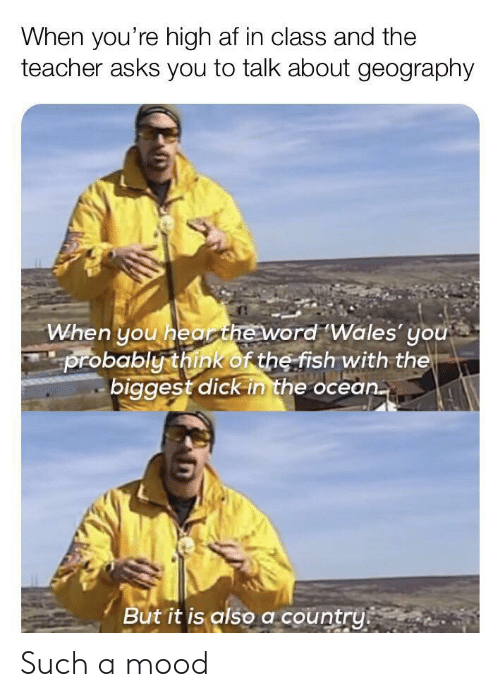 Af, Mood, and Teacher: When you're high af in class and the  teacher asks you to talk about geography  When you hearheword Wales' you  probably think of the fish with the  biggest dick in the ocean.  But it is also a country Such a mood