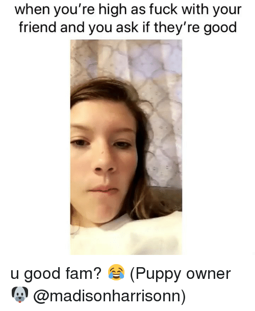 Fam, Weed, and Fuck: when you're high as fuck with your  friend and you ask if they're good u good fam? 😂 (Puppy owner 🐶 @madisonharrisonn)
