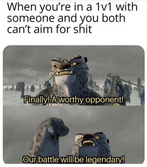 aim: When you're in a 1v1 with  someone and you both  can't aim for shit  Finally! Aworthy opponent!  Our battle will be legendary!