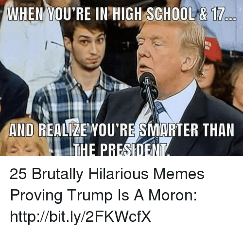Memes, School, and Http: WHEN YOU'RE IN HIGH SCHOOL&17  AND REALZEYOU'RE SMARTER THAN  THE PRESIDENT 25 Brutally Hilarious Memes Proving Trump Is A Moron: http://bit.ly/2FKWcfX