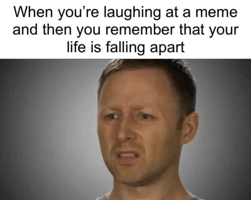 Life, Meme, and Remember: When you're laughing at a meme  and then you remember that your  life is falling apart