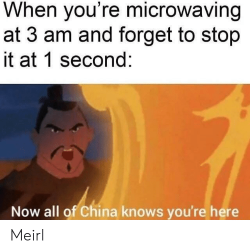 China, MeIRL, and All: When you're microwaving  at 3 am and forget to stop  it at 1 second:  Now all of China knows you're here Meirl