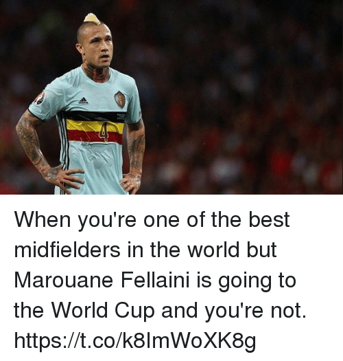 marouane fellaini: When you're one of the best midfielders in the world but Marouane Fellaini is going to the World Cup and you're not. https://t.co/k8ImWoXK8g