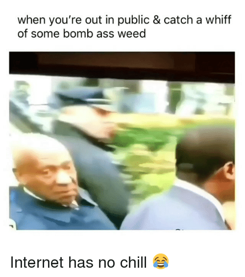 Ass, Chill, and Internet: when you're out in public & catch a whiff  of some bomb ass weed Internet has no chill 😂
