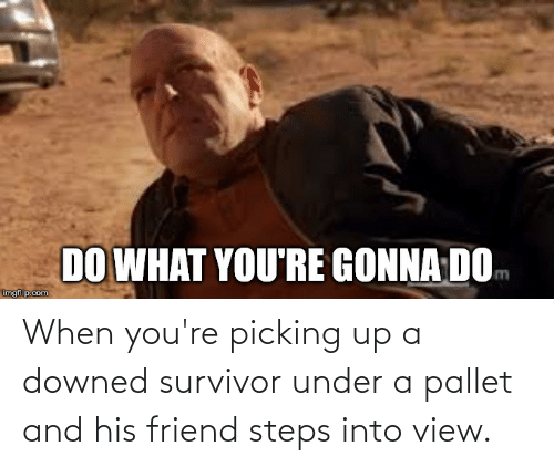 pallet: When you're picking up a downed survivor under a pallet and his friend steps into view.