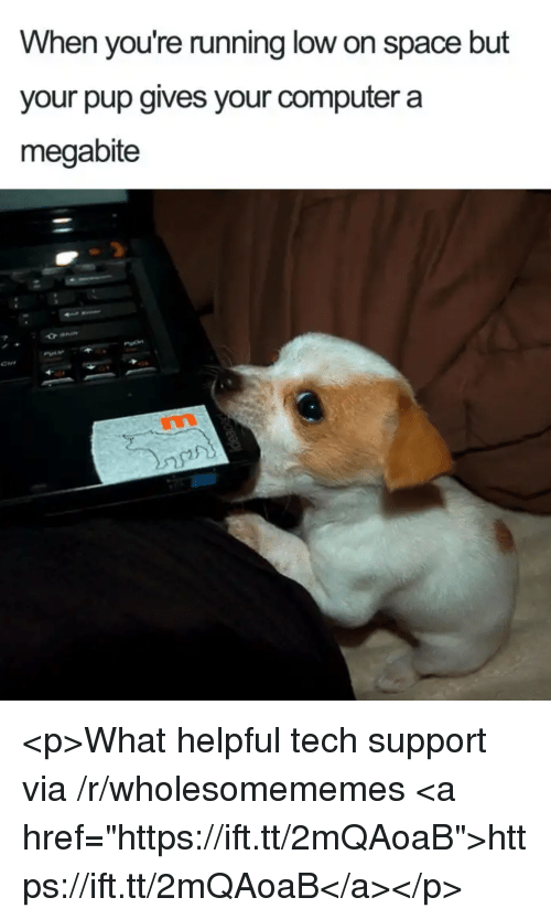"Computer, Space, and Running: When you're running low on space but  your pup gives your computer a  megabite  $2 <p>What helpful tech support via /r/wholesomememes <a href=""https://ift.tt/2mQAoaB"">https://ift.tt/2mQAoaB</a></p>"