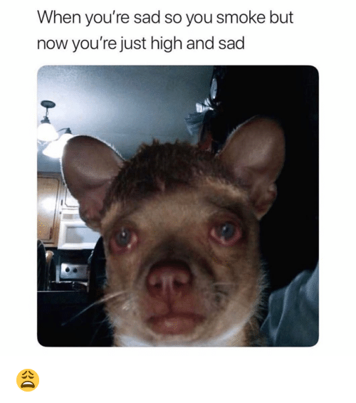 Funny, Sad, and You: When you're sad so you smoke but  now you're just high and sad 😩