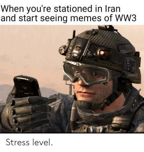 stress: When you're stationed in Iran  and start seeing memes of WW3  1306 Stress level.