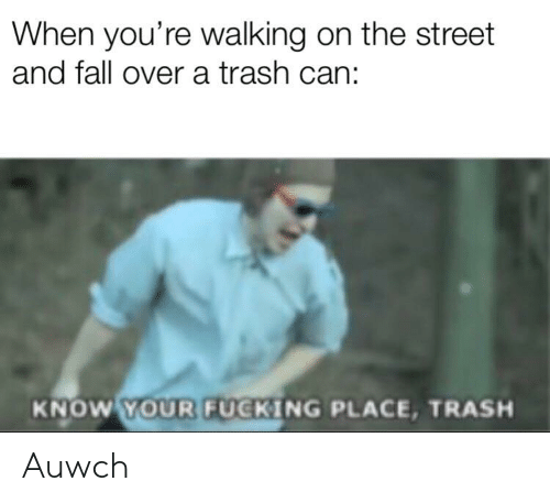 Fall, Trash, and Dank Memes: When you're walking on the street  and fall over a trash can:  YOUR FUCKING  KNOW  PLACE, TRASH Auwch