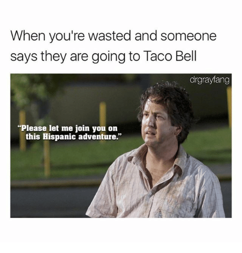 Memes, 🤖, and Hispanic: When you're wasted and someone  says they are going to Taco Bel  drgrayfang  Please let me join you on  this Hispanic adventure.""