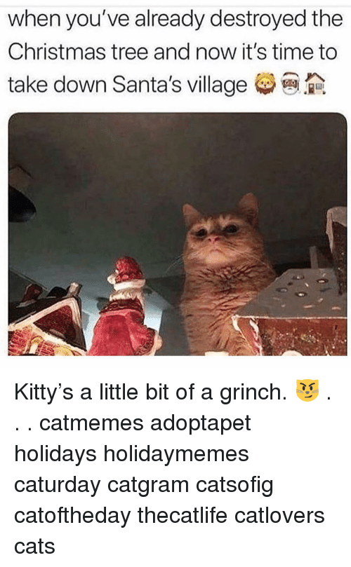 Cats, Caturday, and Christmas: when you've already destroyed the  Christmas tree and now it's time to  take down Santa's village Kitty's a little bit of a grinch. 😼 . . . catmemes adoptapet holidays holidaymemes caturday catgram catsofig catoftheday thecatlife catlovers cats