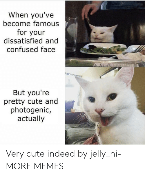 youre pretty: When you've  become famous  for your  dissatisfied and  confused face  But you're  pretty cute and  photogenic,  actually Very cute indeed by jelly_ni- MORE MEMES