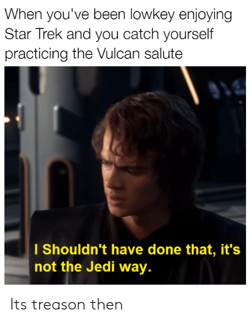 Jedi, Star Trek, and Star: When you've been lowkey enjoying  Star Trek and you catch yourself  practicing the Vulcan salute  l Shouldn't have done that, it's  not the Jedi way. Its treason then