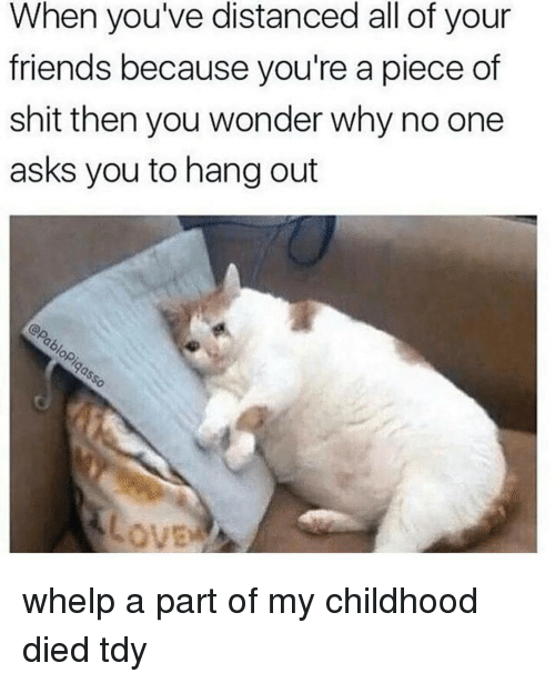 tdi: When you've distanced all of your  friends because you're a piece of  shit then you wonder why no one  asks you to hang out whelp a part of my childhood died tdy