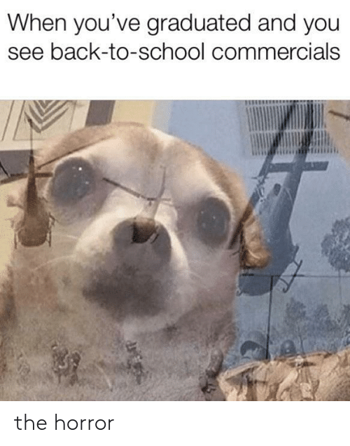 School, Back, and Back to School: When you've graduated and you  see back-to-school commercials the horror