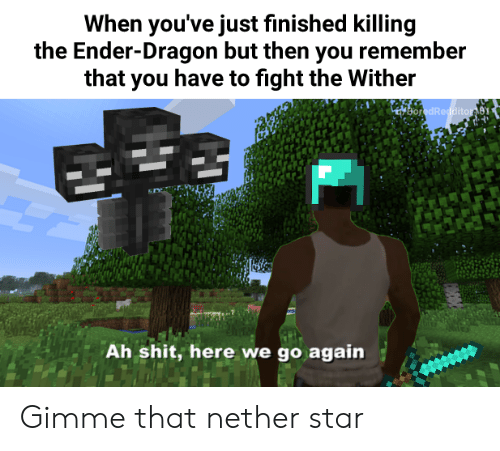 When You've Just Finished Killing the Ender-Dragon but Then You