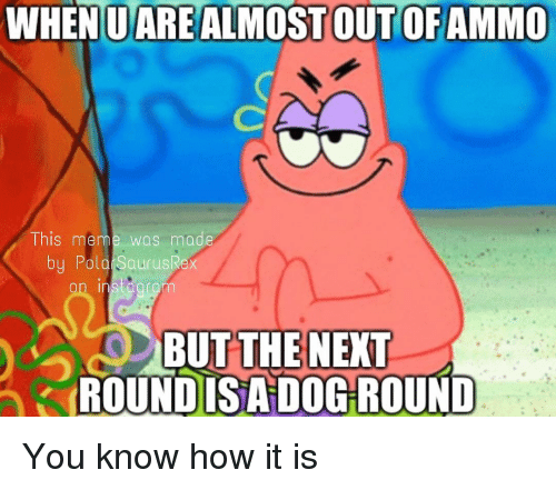 Meme, Memes, and Polo: WHENUAREALMOST OUT OFAMMO  Ihis meme was made  by Polo SaurusRe  on instaoram  BUT THE NEXT  ROUNDISA DOG ROUND You know how it is