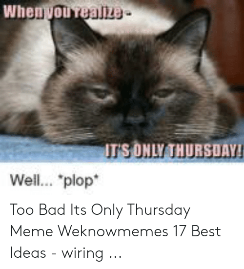 Whenvou Realize It S Only Thursuay Well Plop Too Bad Its Only Thursday Meme Weknowmemes 17 Best Ideas Wiring Bad Meme On Awwmemes Com